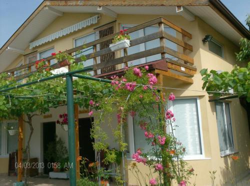 Zdjęcia hotelu: Philippa & Souzana Holiday Homes, Bliznatsi