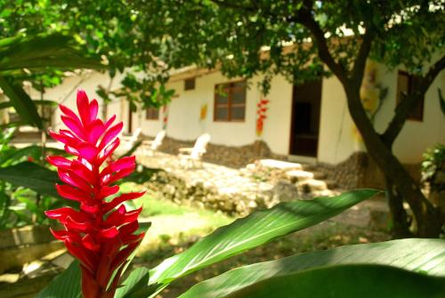 Hotel Pictures: Finca Turística Seynekun, Bonda