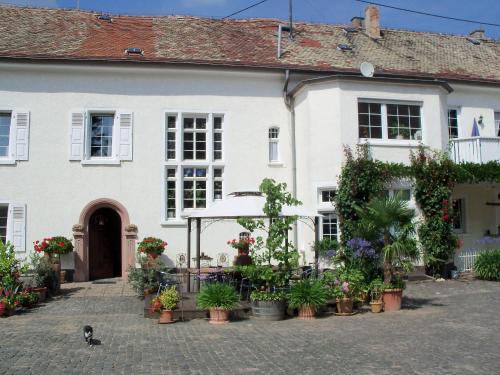 Hotel Pictures: , Flomborn
