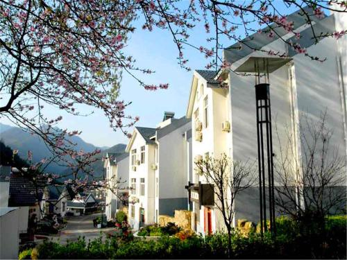 Hotel Pictures: Huangshan Jade No.1 Building, Huangshan Scenic Area