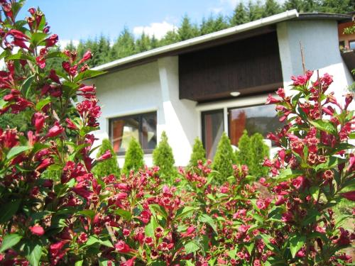 Hotel Pictures: Ferienhaus-Lind, Wimbach