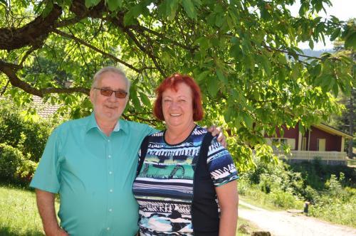 Hotel Pictures: Reinsberger Dorf, Plaue