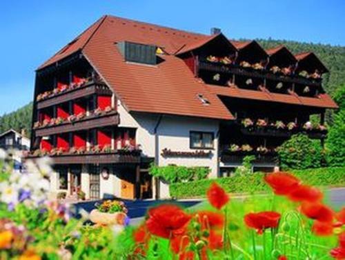 Hotel Pictures: Hotel Schwarzwaldhof, Enzklösterle