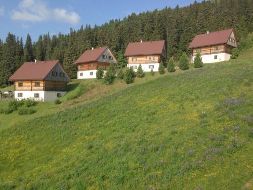 Hotelbilleder: Almhütten Moselebauer, Klippitztorl