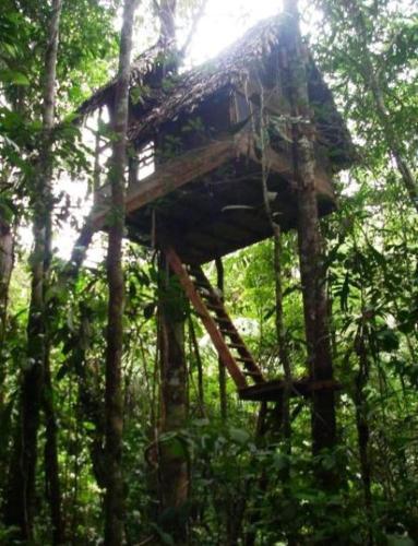 Hotel Pictures: Reserva Natural Tanimboca, Leticia
