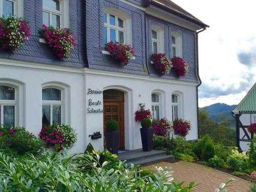 Hotel Pictures: Pension Beste-Schnurbus, Schmallenberg