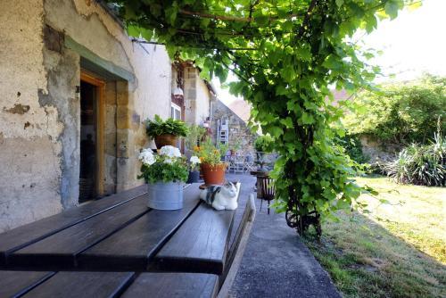 Hotel Pictures: , Épineuil-le-Fleuriel