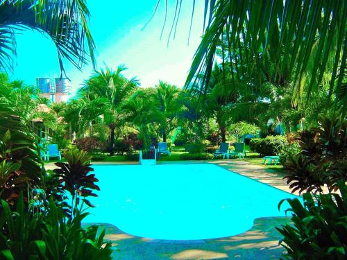 The Golddigger's Resort