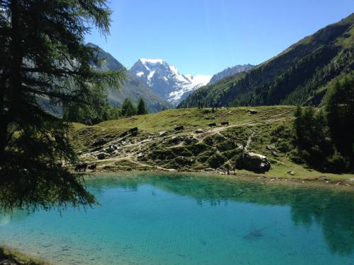 Hotel Pictures: , Arolla