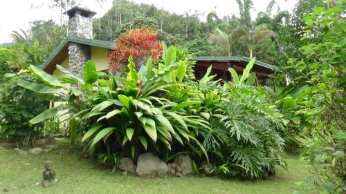 Hotel Pictures: Chalet Orosi, Orosí