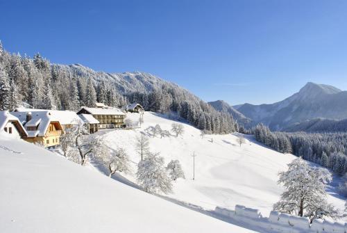 Photos de l'hôtel: Berggasthof Lausegger, Ferlach