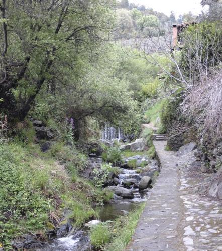 Hotel Pictures: Casa Rural La Ortiga, Robledillo de Gata