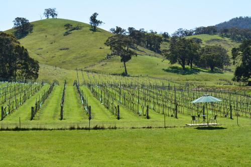 Fotos do Hotel: Blue House at Mountainside Wines, Mount Cole