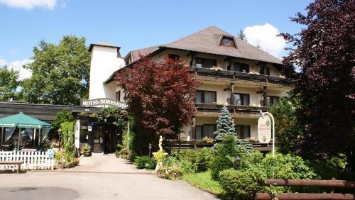 Hotel Pictures: Hotel Hohenried Im Rosengarten, Freudenstadt