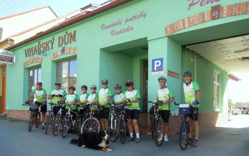 Hotel Pictures: , Dubňany