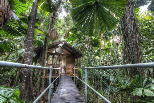 Hotellikuvia: Daintree Wilderness Lodge, Daintree