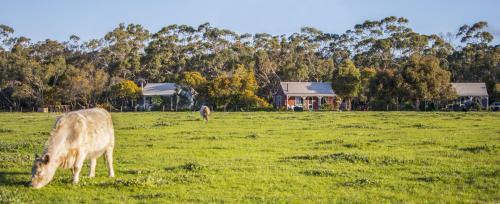 Photos de l'hôtel: Freshwater Creek Cottages & Farm Stay, Torquay