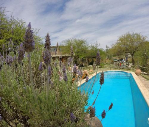 Foto Hotel: Cabañas de Montaña Rio Amarillo, Chilecito