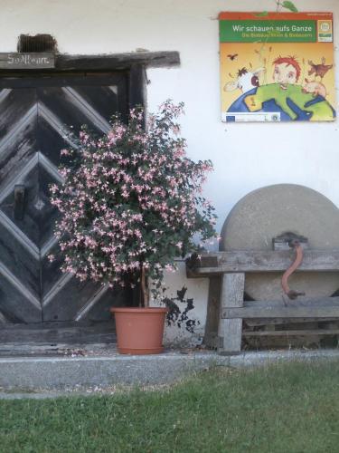 Hotellbilder: , Birkfeld