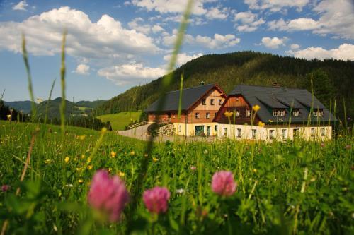 ホテル写真: Ferienstadl - Hammerau, ゲストリング・アン・デア・イップス