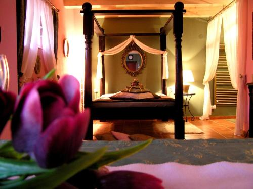 Hotel Pictures: , Nechanice
