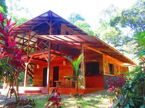 Jungle House on Rio Cano Negro