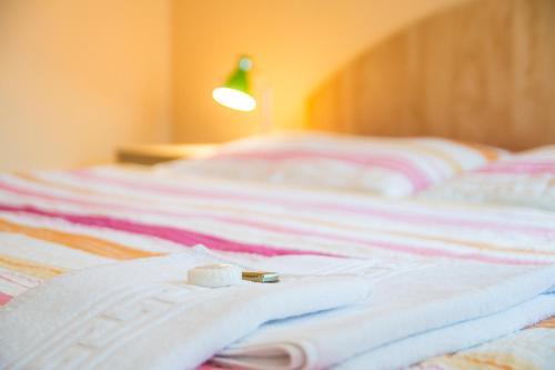 Hotel Pictures: , Čejkovice
