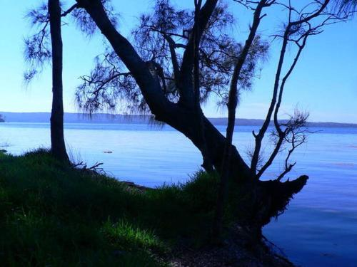 Hotellikuvia: Waterfront Jervis Bay Escape Cooinda, Jervis Bay Village