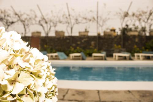 Hotel Pictures: Residencial Palo Blanco I, Realejo Alto