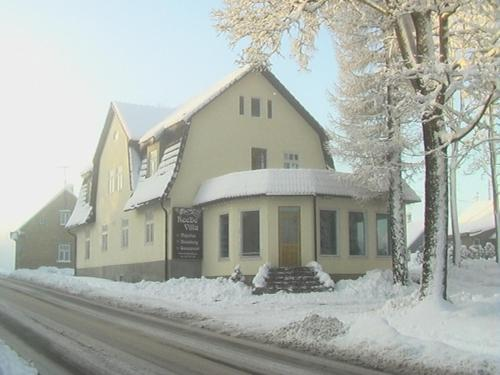 Hotel Pictures: ReeDe Villa, Otepää