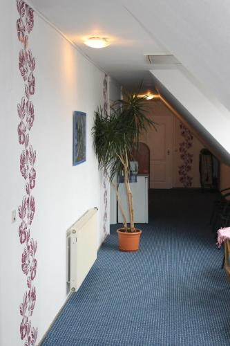 Hotel Pictures: , Mittenwalde