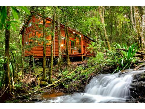Photos de l'hôtel: The Mouses House Rainforest Retreat, Springbrook
