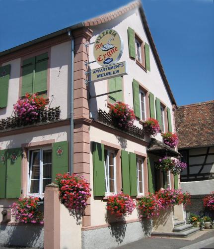 Hotel Pictures: Au Cygne, Hoerdt