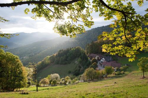 Hotel Pictures: Auberge Du Mehrbachel, Saint-Amarin