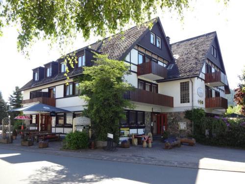 Hotel Pictures: Landhotel Am Schloss, Olsberg