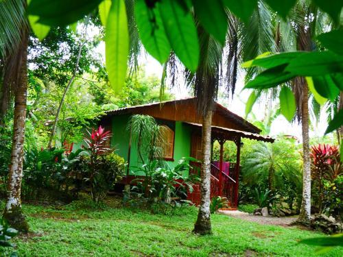 Hotel Pictures: Caribbean house, Cahuita