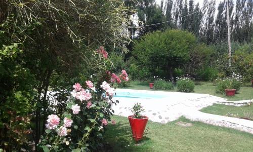Zdjęcia hotelu: Cabañas Antonia, Tunuyán