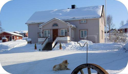 Hotel Pictures: Lomamaja Pekonen Apartments, Muonio