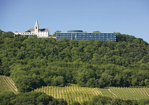 ホテル写真: , ウィーン