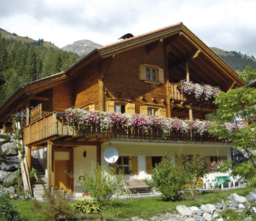 Hotelbilleder: Haus Anemone, Steeg