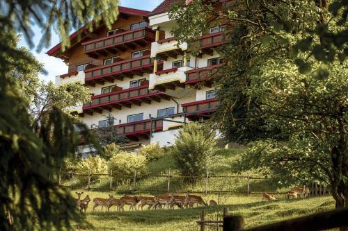 Hotel Pictures: , Wershofen
