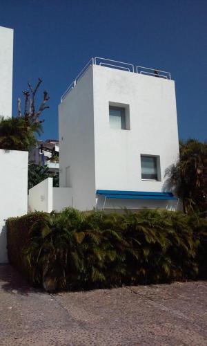 Acapulco Hydra 4