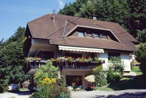 Hotel Pictures: Haus Schindler, Ottenhöfen