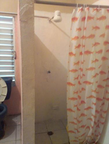 Hotel Pictures: The Stork- Jabiru, Placencia Village