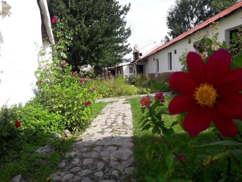 Hotellikuvia: Estancia Las Tacanas, Tafí del Valle