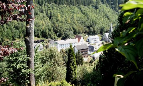 Hotel Pictures: , Schwarzenbach am Wald