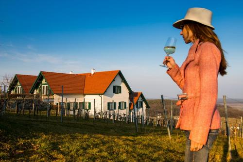 Hotelbilder: Weinresidenz am Eisenberg, Eisenberg an der Pinka