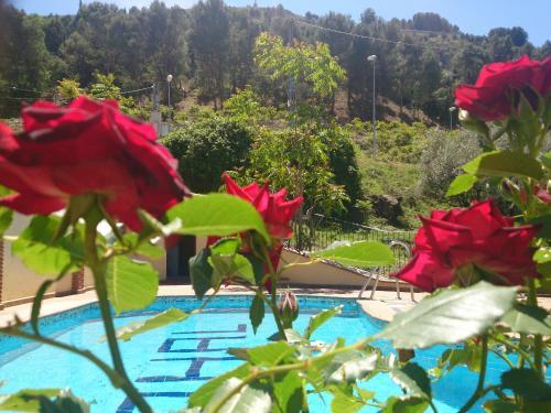 Hotel Pictures: Alojamiento Nohal, La Iruela