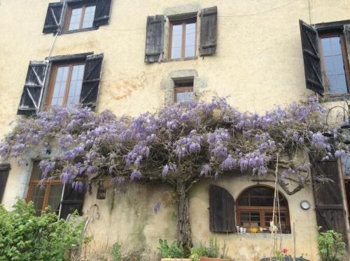 Hotel Pictures: , Moissannes