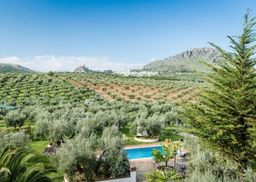 Hotel Pictures: , Luque